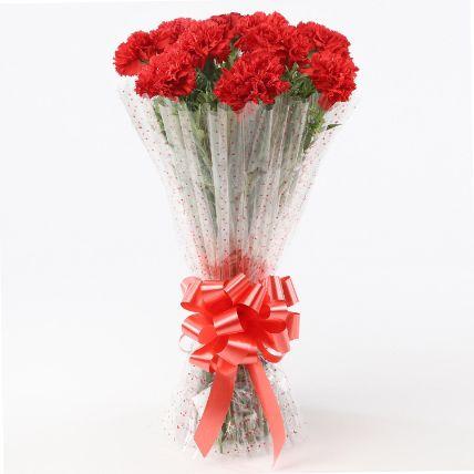 10 Elegant Red Carnations Bouquet
